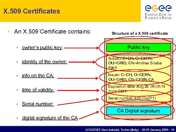 X. 509 Certificates • An X. 509 Certificate contains: Structure of a X. 509