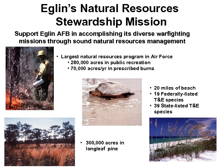 Eglin's Natural Resources Stewardship Mission Support Eglin AFB in accomplishing its diverse warfighting missions