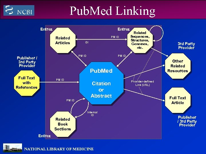 Pub. Med Linking Entrez Related Articles PM ID GI PM ID Publisher / 3