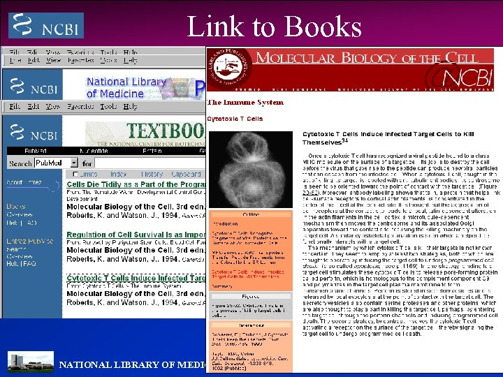 Link to Books NATIONAL LIBRARY OF MEDICINE