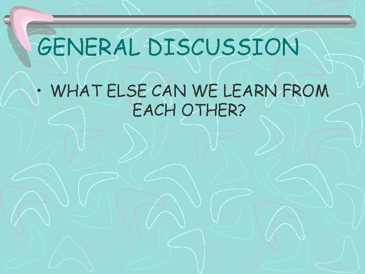 GENERAL DISCUSSION • WHAT ELSE CAN WE LEARN FROM EACH OTHER?