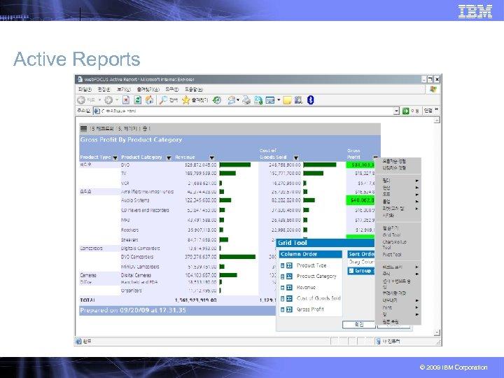 Active Reports © 2009 IBM Corporation