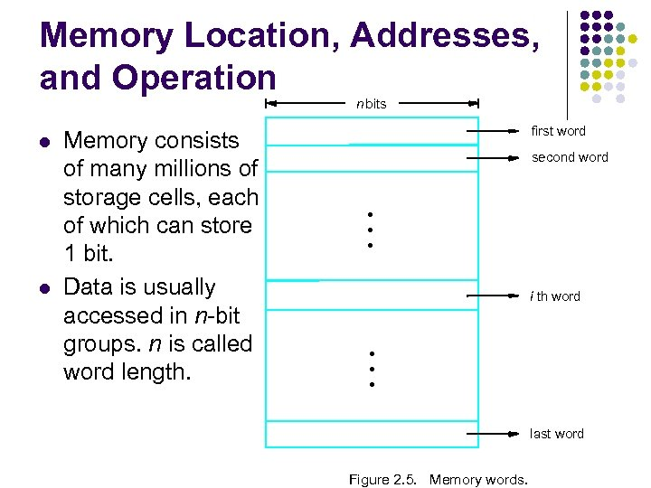 Memory Location, Addresses, and Operation n bits l l Memory consists of many millions