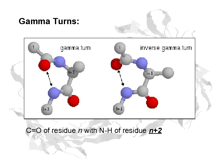 Gamma Turns: C=O of residue n with N-H of residue n+2