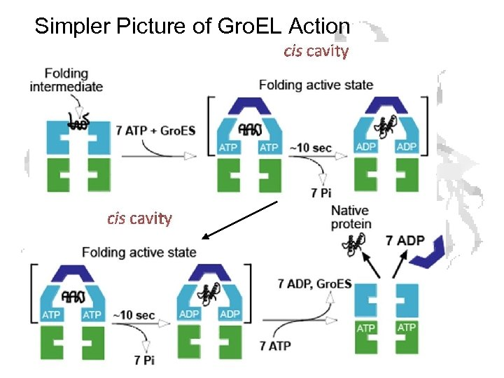Simpler Picture of Gro. EL Action