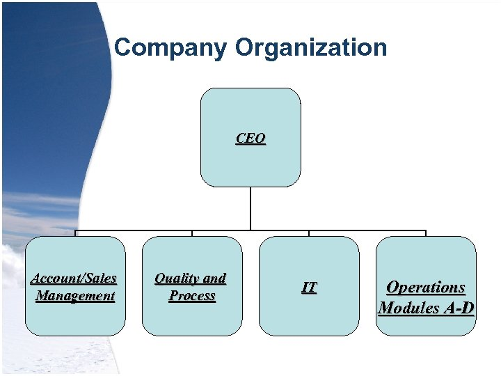 Company Organization CEO Account/Sales Management Quality and Process IT Operations Modules A-D