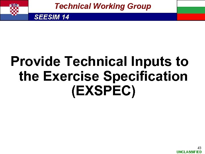 Technical Working Group SEESIM 14 Provide Technical Inputs to the Exercise Specification (EXSPEC) 43