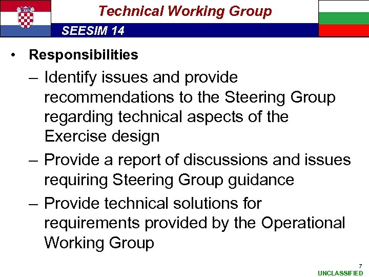Technical Working Group SEESIM 14 • Responsibilities – Identify issues and provide recommendations to