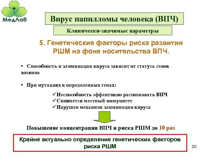 Вирус папилломы человека (ВПЧ) Клинически-значимые параметры 5. Генетические факторы риска развития РШМ на фоне