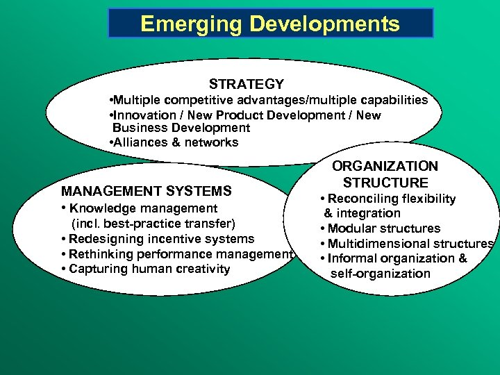 Emerging Developments STRATEGY • Multiple competitive advantages/multiple capabilities • Innovation / New Product Development