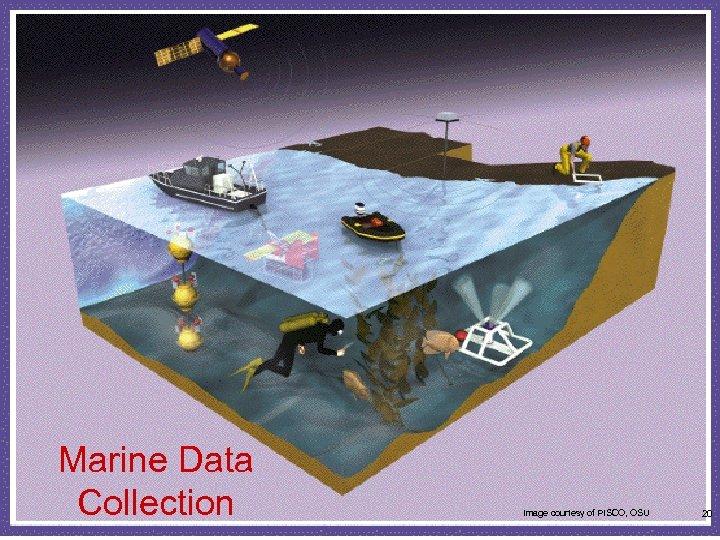 Marine Data Collection Image courtesy of PISCO, OSU 20