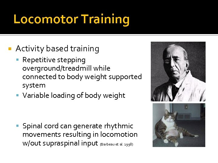 Locomotor Training Activity based training Repetitive stepping overground/treadmill while connected to body weight supported