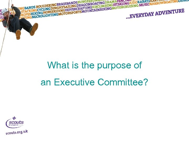 What is the purpose of an Executive Committee?