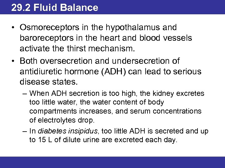 29. 2 Fluid Balance • Osmoreceptors in the hypothalamus and baroreceptors in the heart