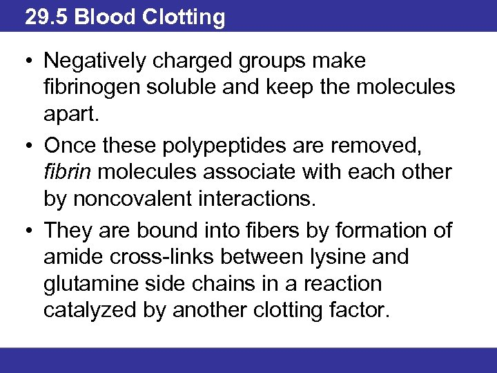 29. 5 Blood Clotting • Negatively charged groups make fibrinogen soluble and keep the