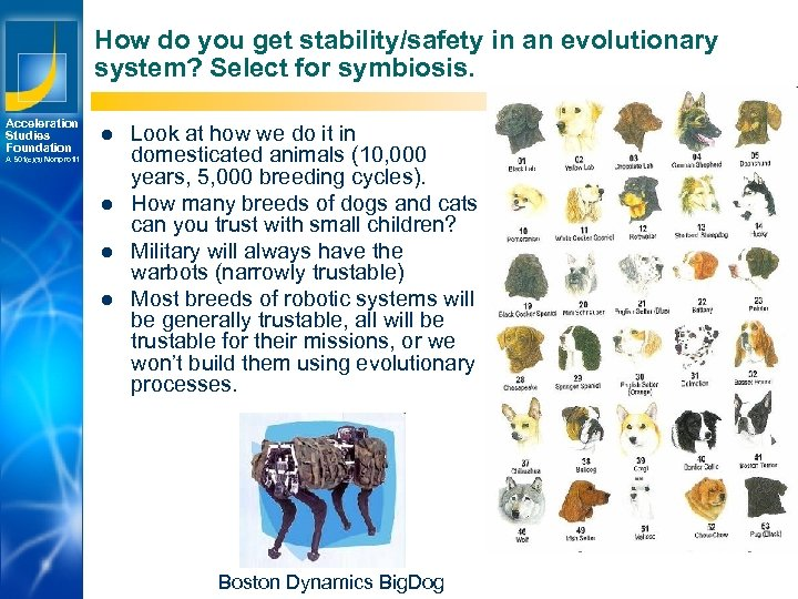 How do you get stability/safety in an evolutionary system? Select for symbiosis. Acceleration Studies
