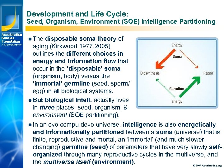 Development and Life Cycle: Seed, Organism, Environment (SOE) Intelligence Partitioning Acceleration Studies Foundation A