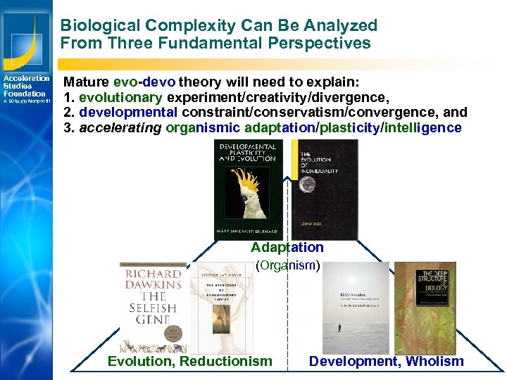 Biological Complexity Can Be Analyzed From Three Fundamental Perspectives Acceleration Studies Foundation A 501(c)(3)