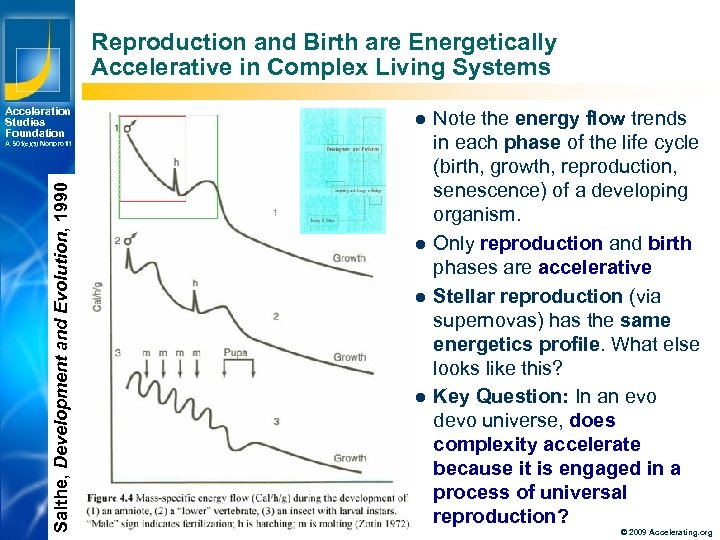 Reproduction and Birth are Energetically Accelerative in Complex Living Systems Acceleration Studies Foundation l
