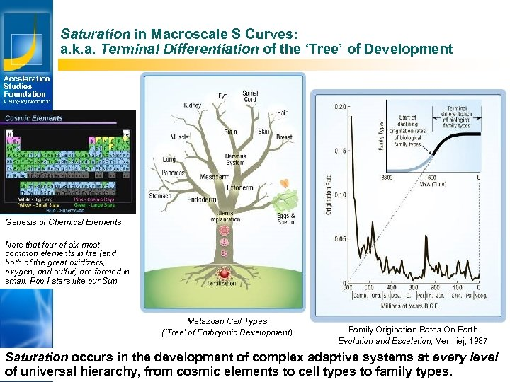 Saturation in Macroscale S Curves: a. k. a. Terminal Differentiation of the 'Tree' of