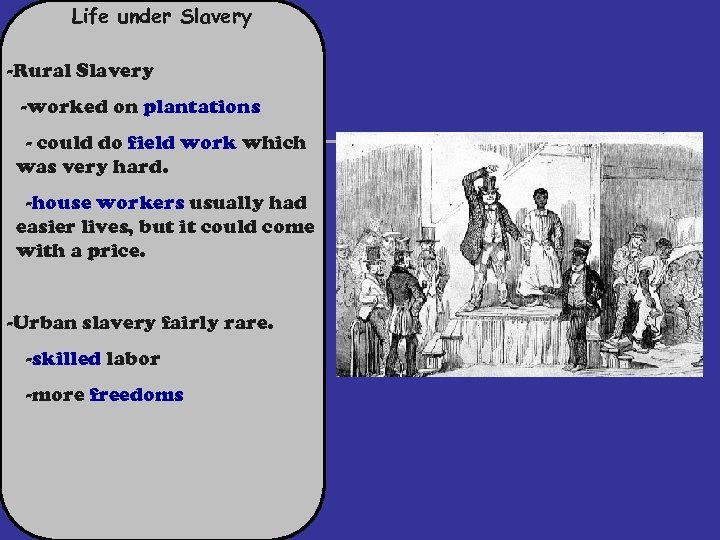 Life under Slavery -Rural Slavery -worked on plantations - could do field work which
