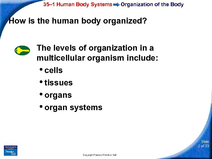 35– 1 Human Body Systems Organization of the Body How is the human body