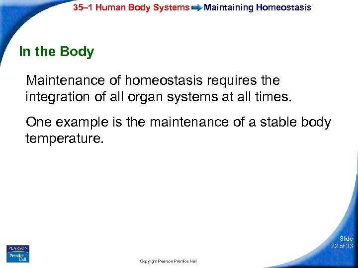 35– 1 Human Body Systems Maintaining Homeostasis In the Body Maintenance of homeostasis requires