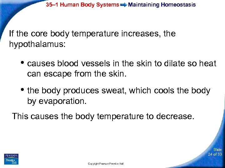 35– 1 Human Body Systems Maintaining Homeostasis If the core body temperature increases, the