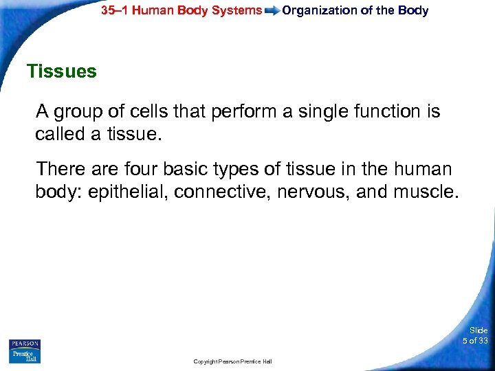 35– 1 Human Body Systems Organization of the Body Tissues A group of cells