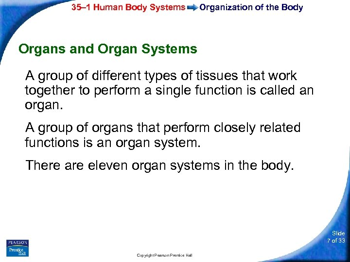 35– 1 Human Body Systems Organization of the Body Organs and Organ Systems A