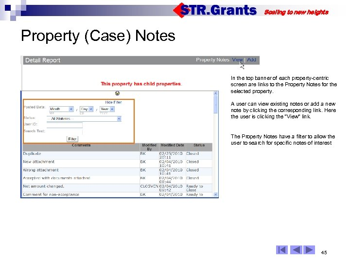 Scaling to new heights Property (Case) Notes In the top banner of each property-centric