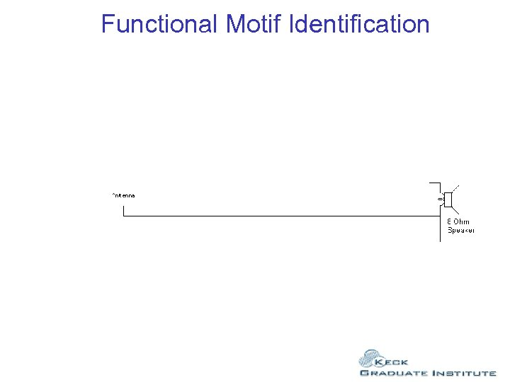 Functional Motif Identification