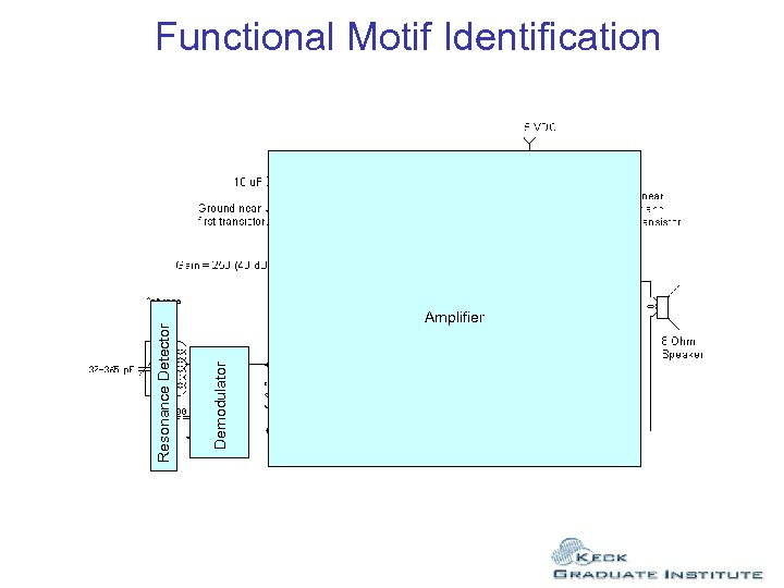 Amplifier Demodulator Resonance Detector Functional Motif Identification