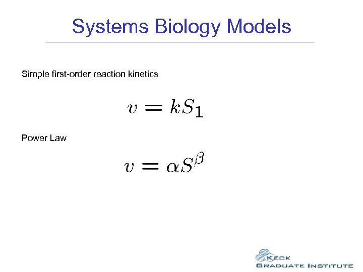 Systems Biology Models Simple first-order reaction kinetics Power Law