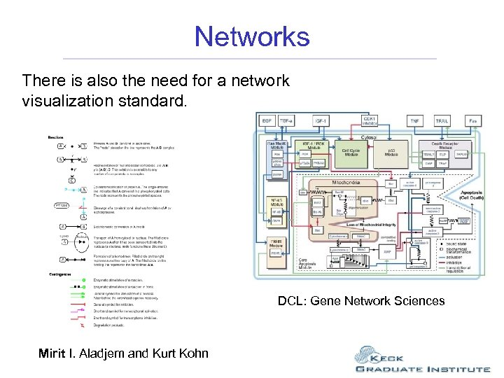 Networks There is also the need for a network visualization standard. DCL: Gene Network