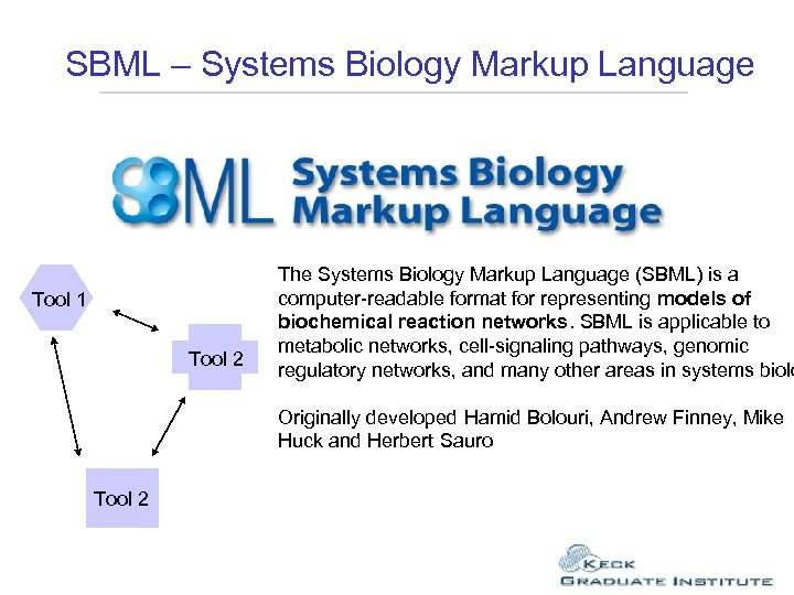 SBML – Systems Biology Markup Language The Systems Biology Markup Language (SBML) is a