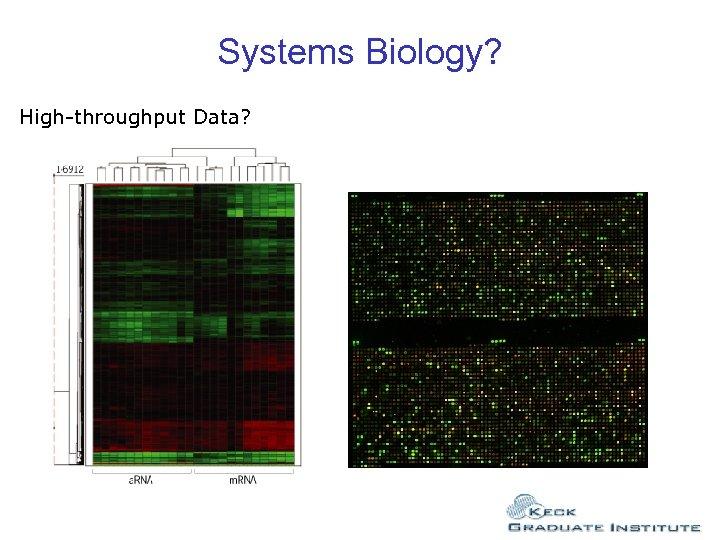 Systems Biology? High-throughput Data?