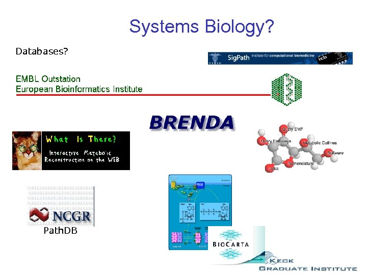 Systems Biology? Databases? Path. DB