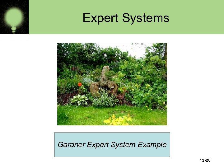 Expert Systems Gardner Expert System Example 13 -20