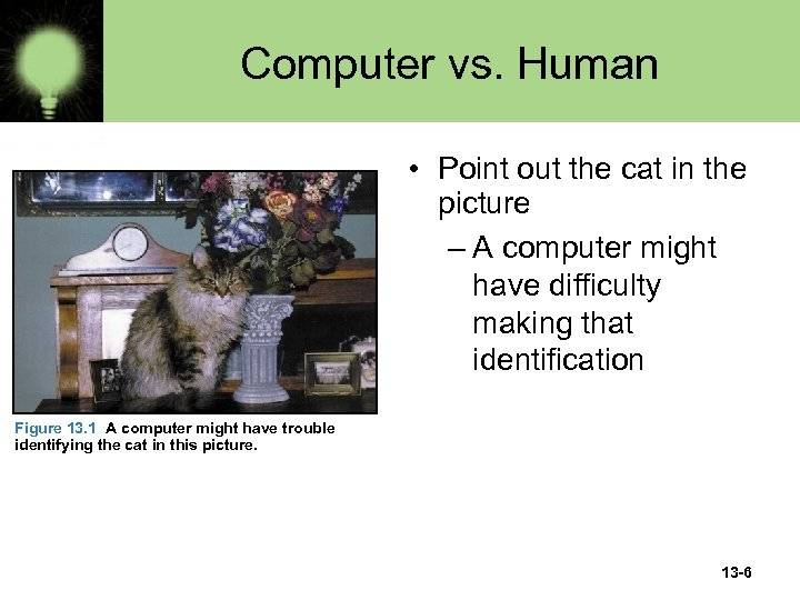 Computer vs. Human • Point out the cat in the picture – A computer