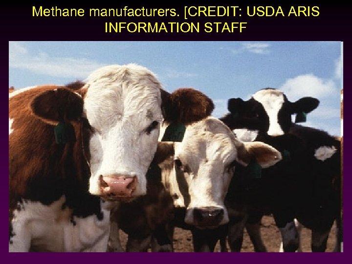 Methane manufacturers. [CREDIT: USDA ARIS INFORMATION STAFF