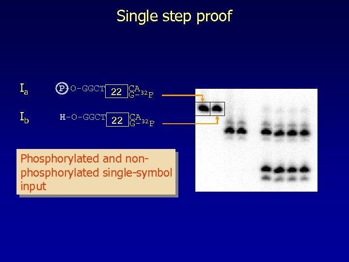 Single step proof Ia P-O-GGCT 22 CA 32 G- P Ib H-O-GGCT 22 CA