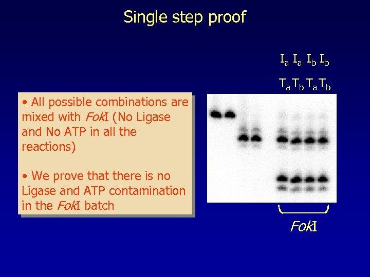 Single step proof Ia Ia Ib Ib Ta Tb • All possible combinations are