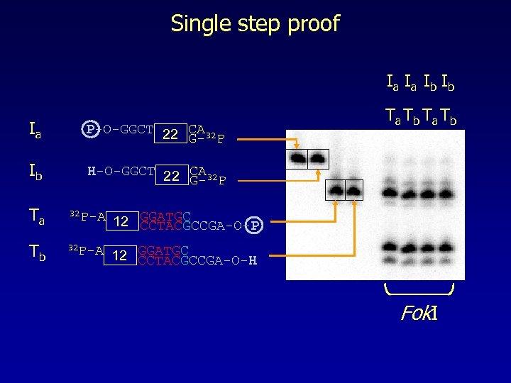 Single step proof Ia Ia Ib Ib Ia P-O-GGCT 22 CA 32 G- P