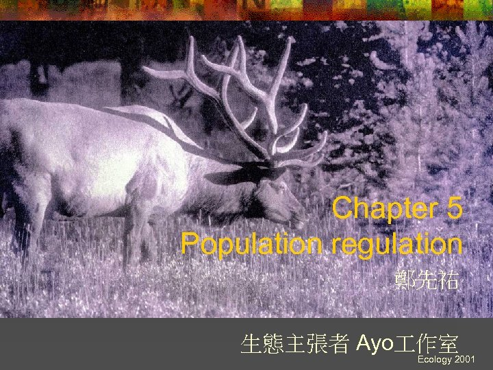 Chapter 5 Population regulation 鄭先祐 生態主張者 Ayo 作室 Ecology 2001