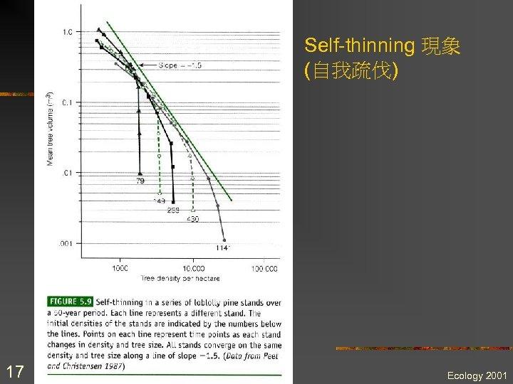 Self-thinning 現象 (自我疏伐) 17 Ecology 2001