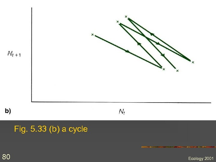 Fig. 5. 33 (b) a cycle 80 Ecology 2001