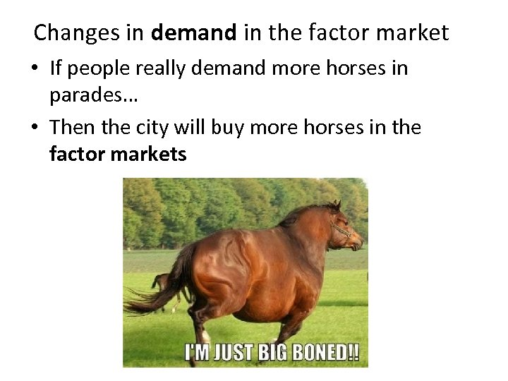 Changes in demand in the factor market • If people really demand more horses