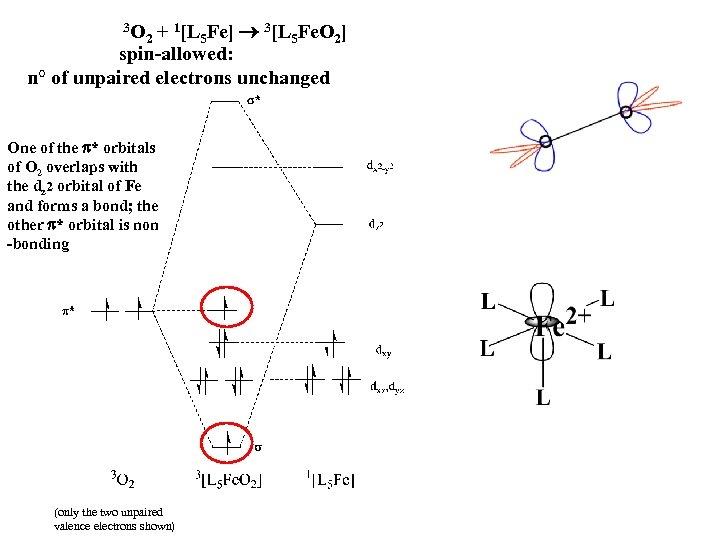3 O 2 + 1[L 5 Fe] 3[L 5 Fe. O 2] spin-allowed: n°