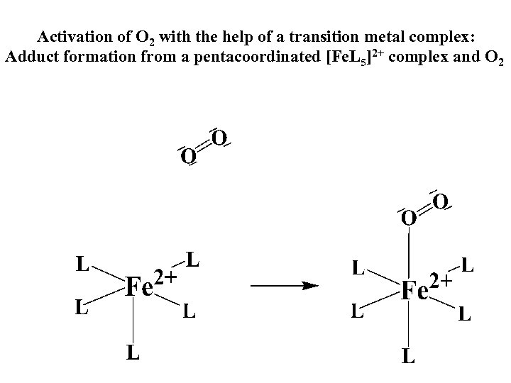 Activation of O 2 with the help of a transition metal complex: Adduct formation